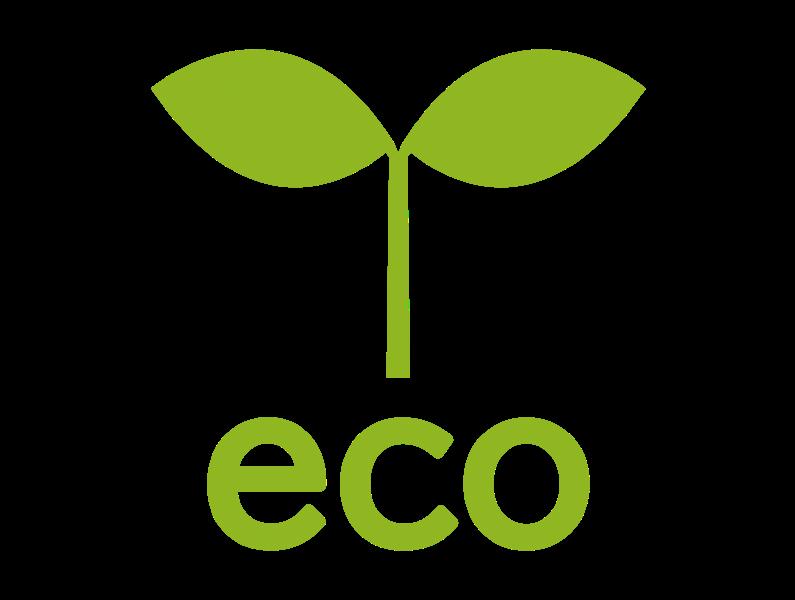 エコ イメージ写真